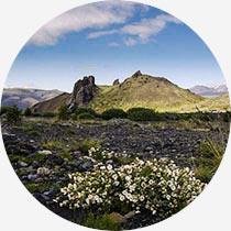 Island Reykjavík-Urlaub Þórsmörk