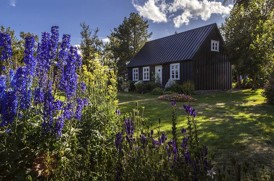 Rund um Island in 9 Tagen: Botanischer Garten Akureyri