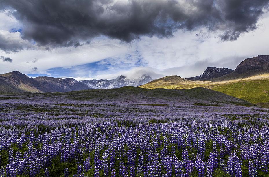 Islandreise: Breiðdalur