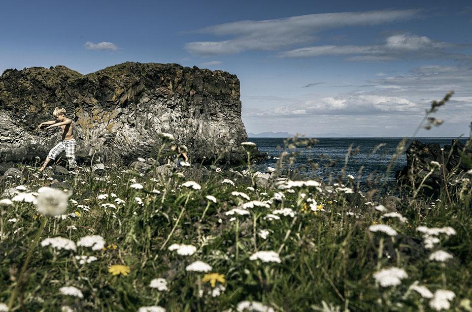 Blumenwiese bei Hellnar