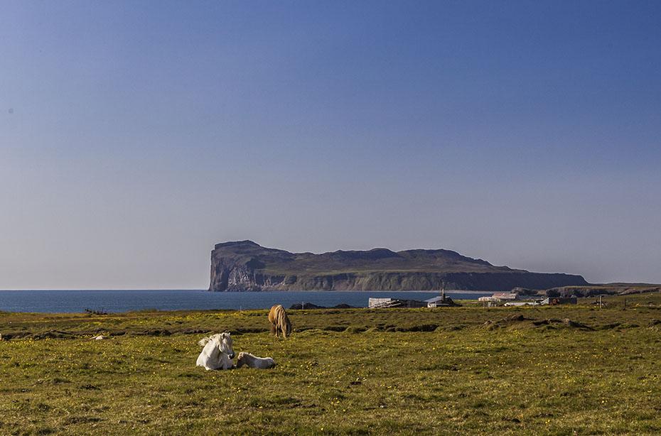 Kap Þórðarhöfði bei Hofsós