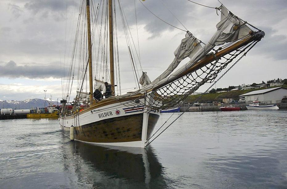 Whalewatching-Boot in Húsavík