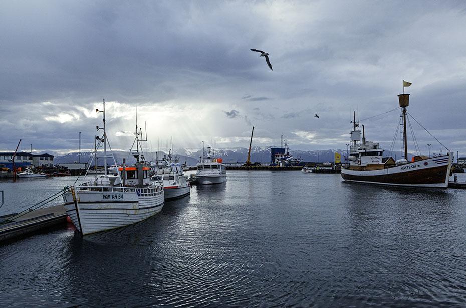 Der Hafen von Húsavík