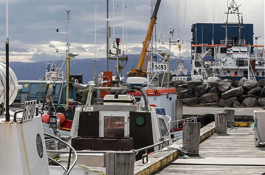 Im Hafen von Húsavík