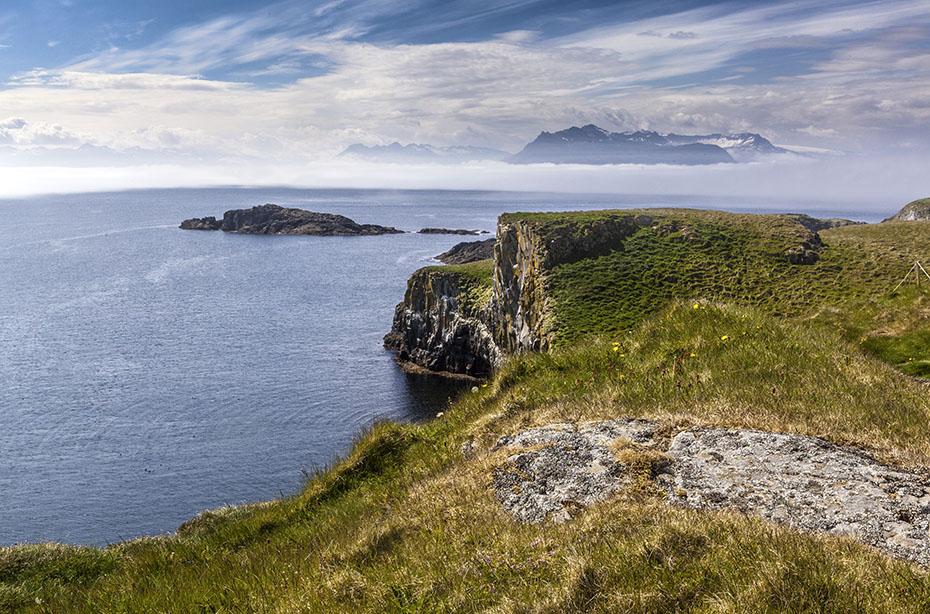 Island Islandreisen VogeliInsel Papey