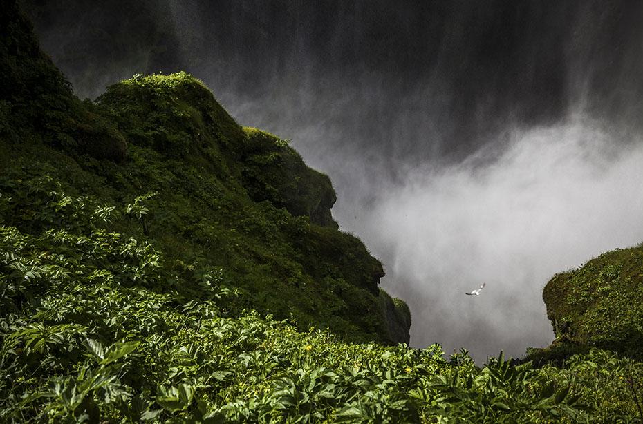 Aussichtspunkt für Schwindelfreie am Skógafoss