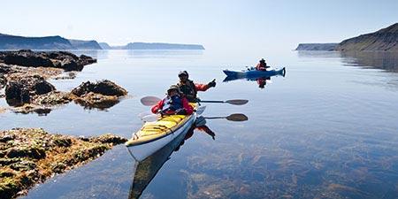 Island Exkursionen Wstfjorde Hornstrandir