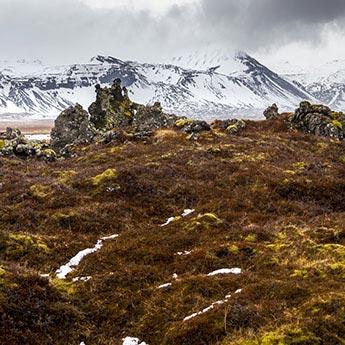 Lavafeld in Búðir