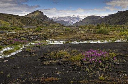 Fluss im Tal von Þórsmörk
