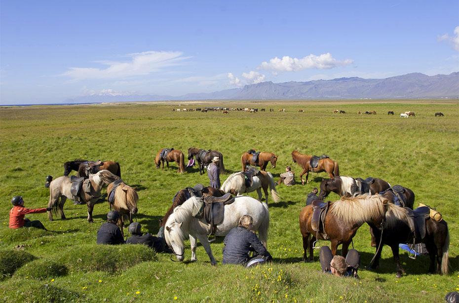 Pause für Pferde und Reiter