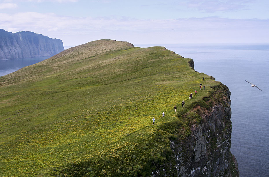 Outdoor-Abenteuer Westfjorde: Klippen von Hornstrandir