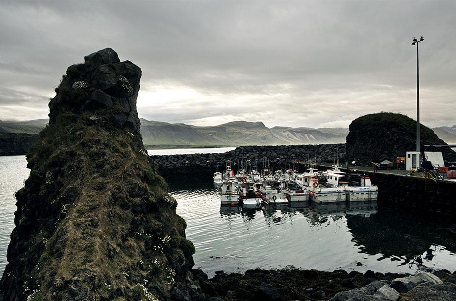 Islandreisen Hafen von Arnarstapi