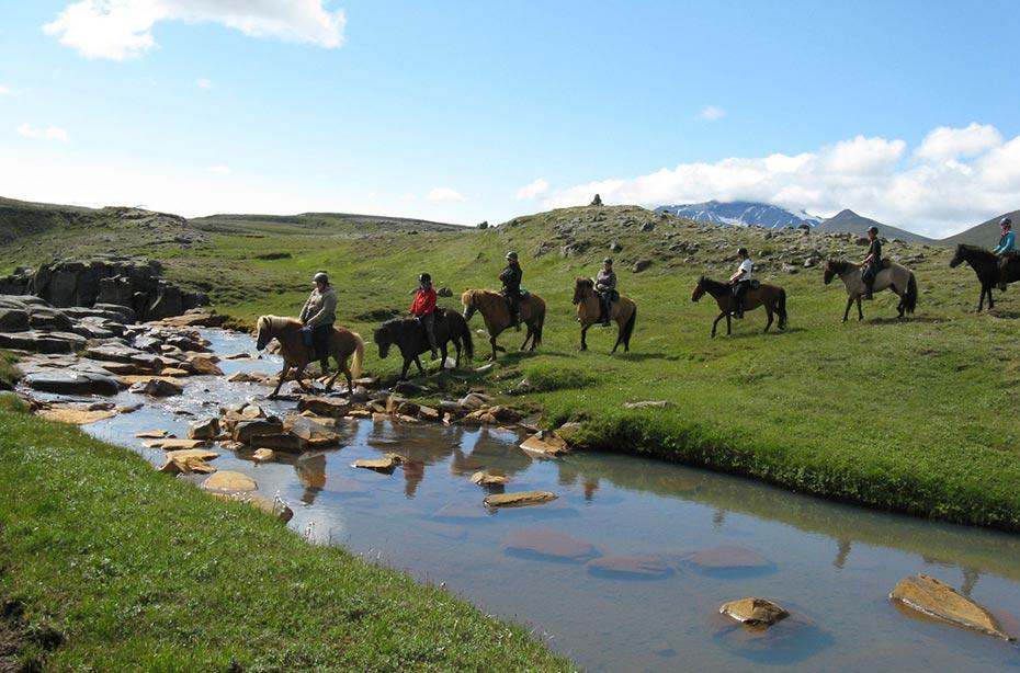Island Islandreisen Reittour