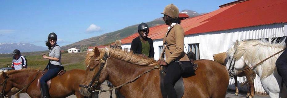 Reiten im Mittsommer: Islandpferde und Reiter