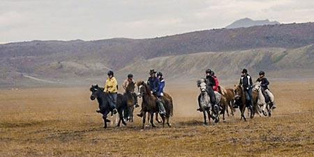 Islandpferde und Polarlichter Reiter